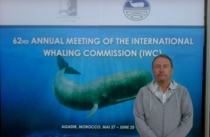 Campaign Whale Director, Andy Ottaway, at the IWC in Agadir